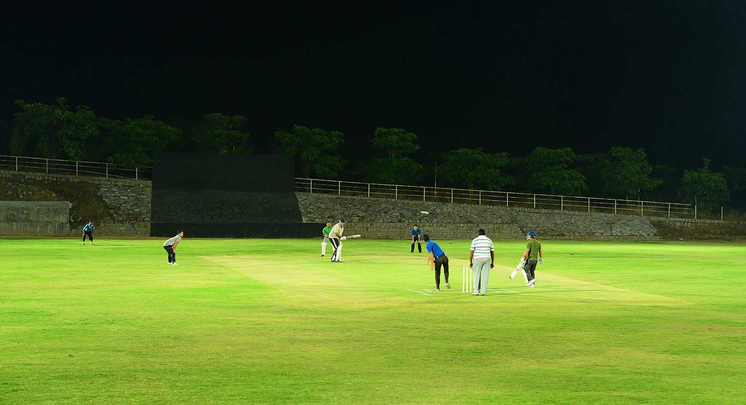 Mini Cricket Stadium, Palm Exotica