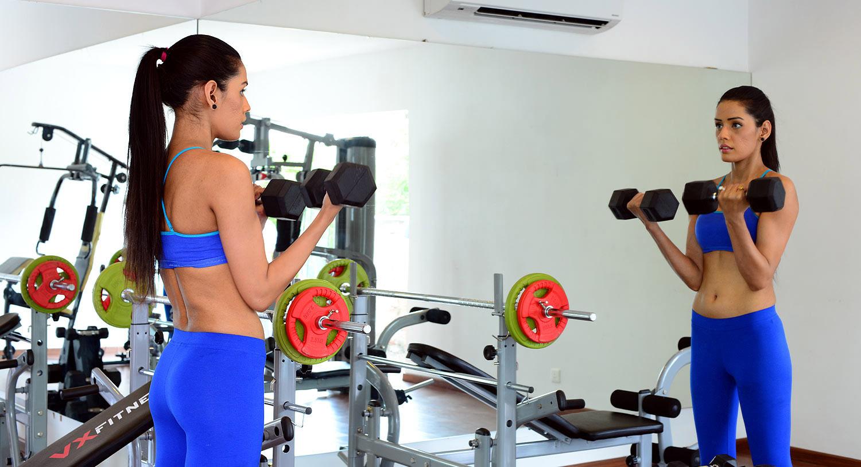 Gym, Palm Exotica