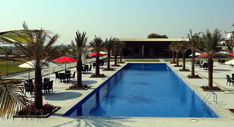 Palmexotica Pool View